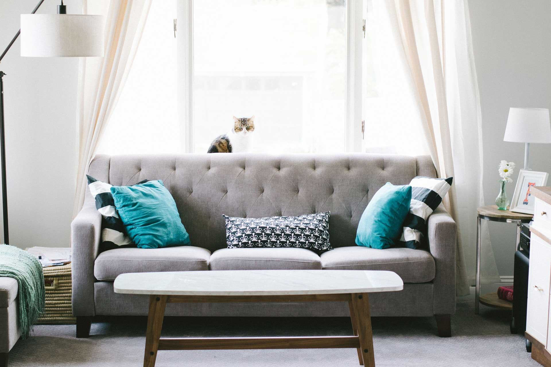 Beautiful gray sofa