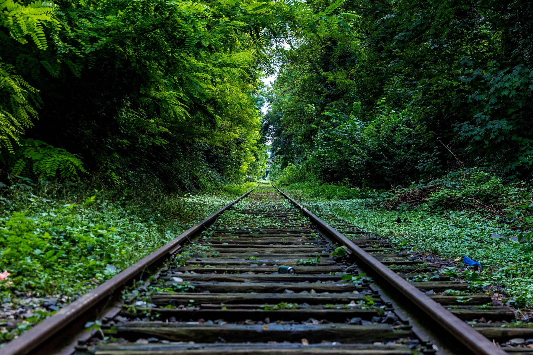 Oldest Railway Track
